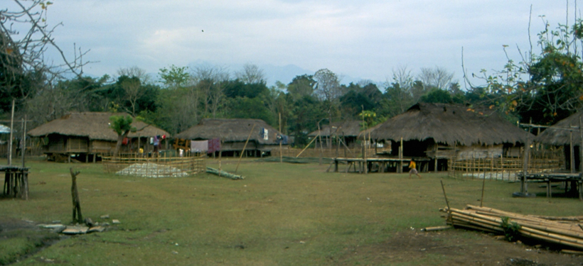 Arunachal Tribal Village
